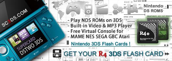 NDSTT® Top Nintendo DS Flash Card DSTT • R4 3DS »